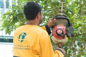 Al Fajer Landscaping Services